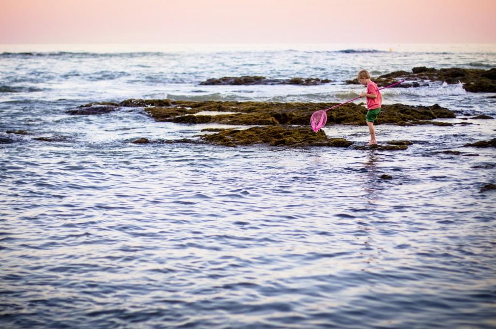 Krabben, Strand, Küste, Kind