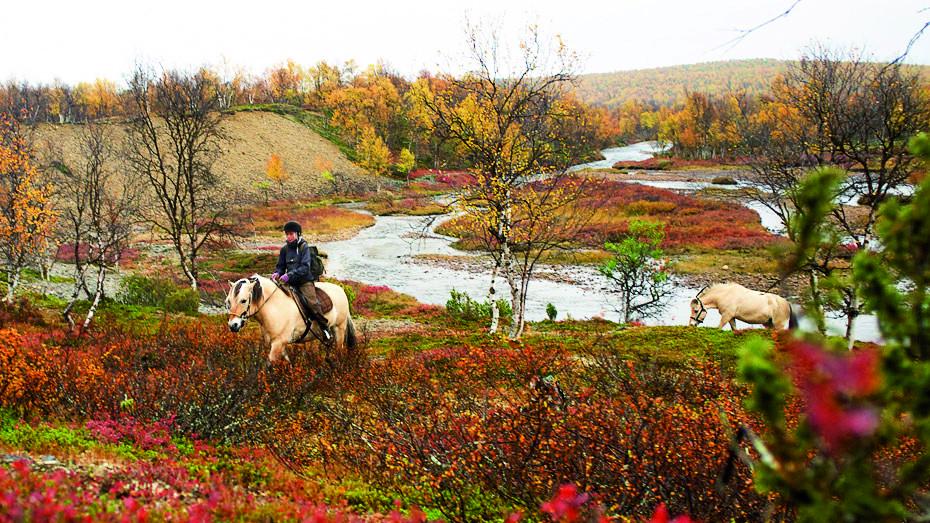 Reiterferien in Finnland